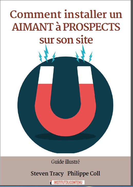 aimants à prospects marketing de contenu